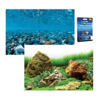 Rock/Sea Of Green Aquarium background