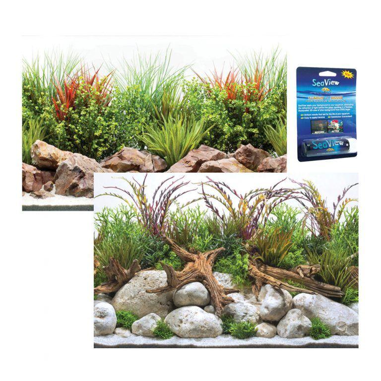Coastal / River Aquarium background