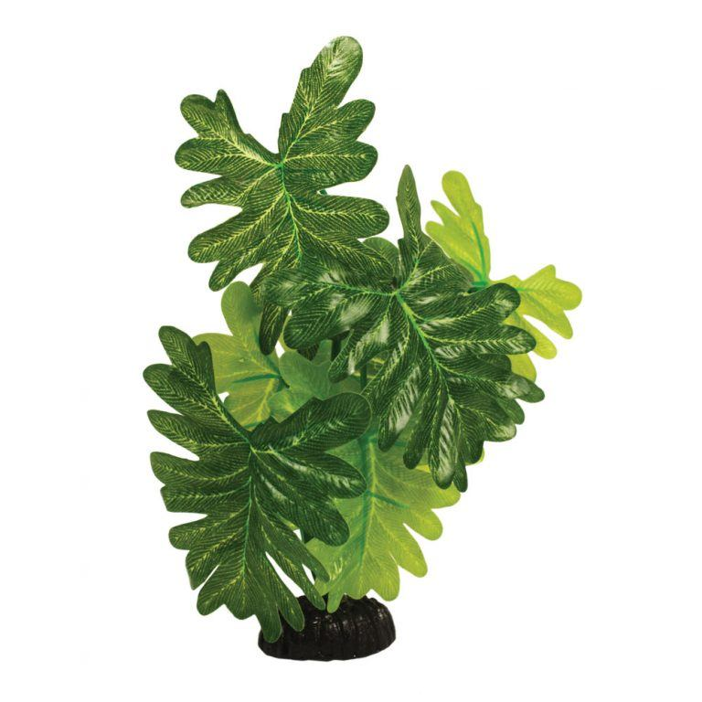 Indian Fern Silk