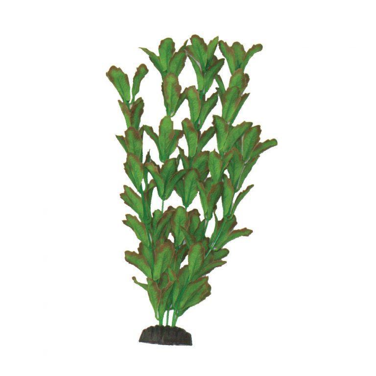 Rotundifolia Silk