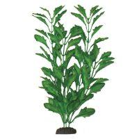 Polysperma Green Silk