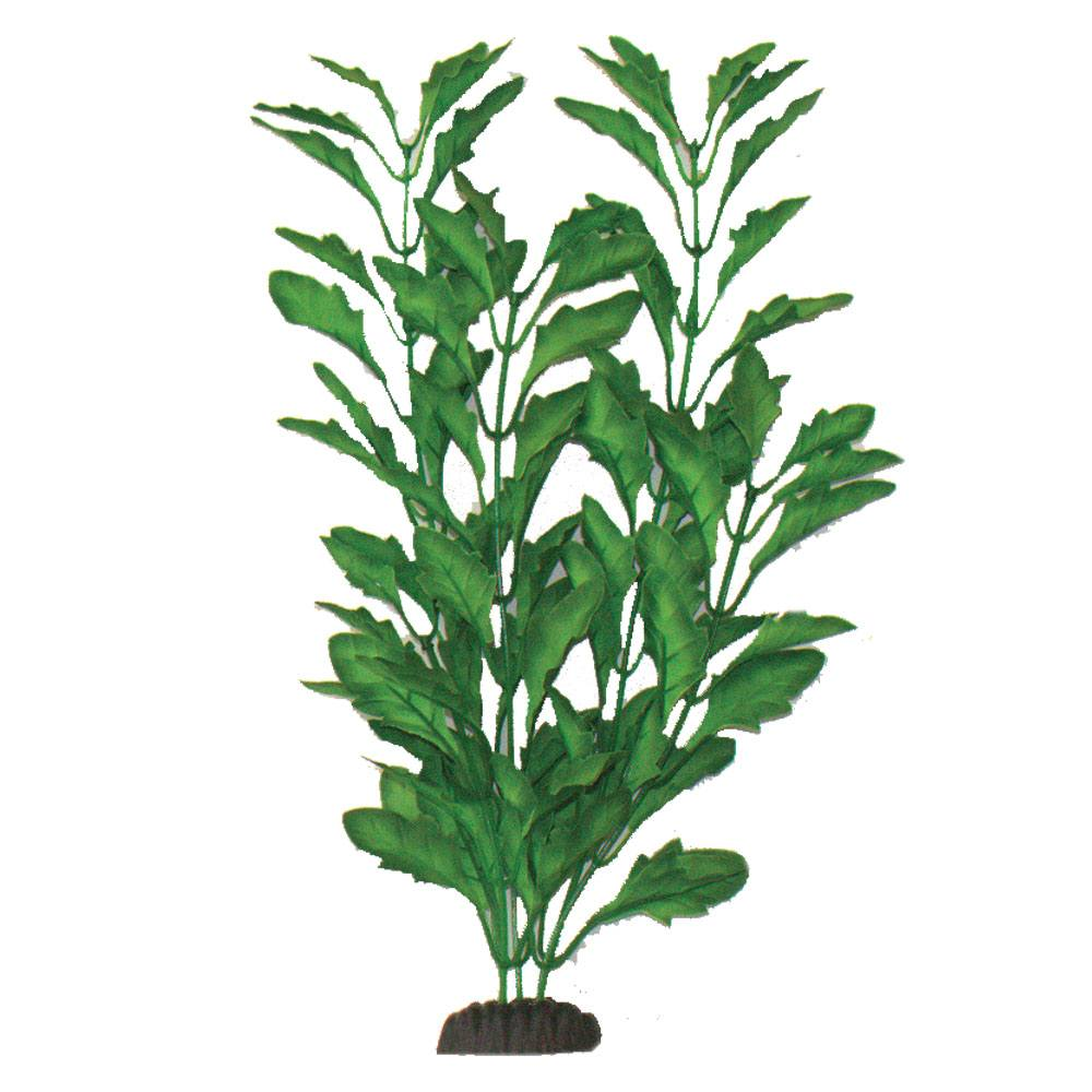 Polysperma Green Silk