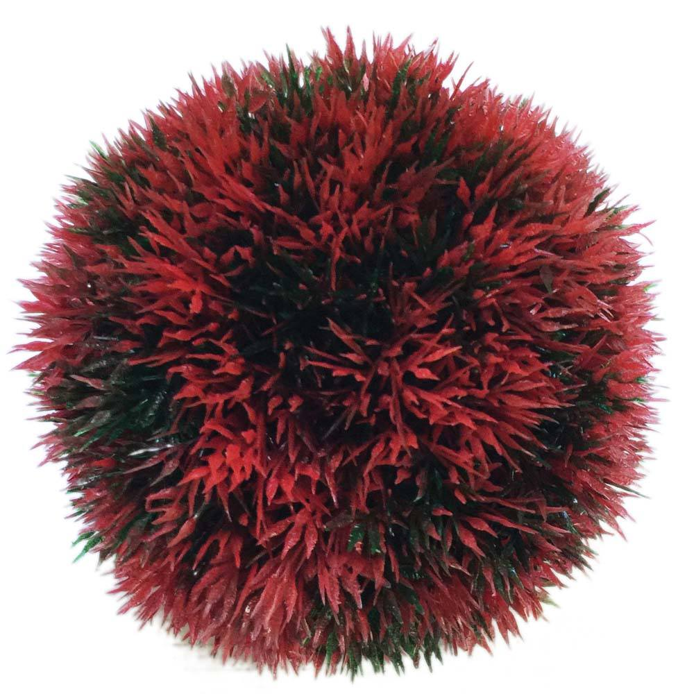 Moss Balls & Small Plants