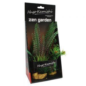 Hugo Kamishi Plant – box 3 mixed bushy plants