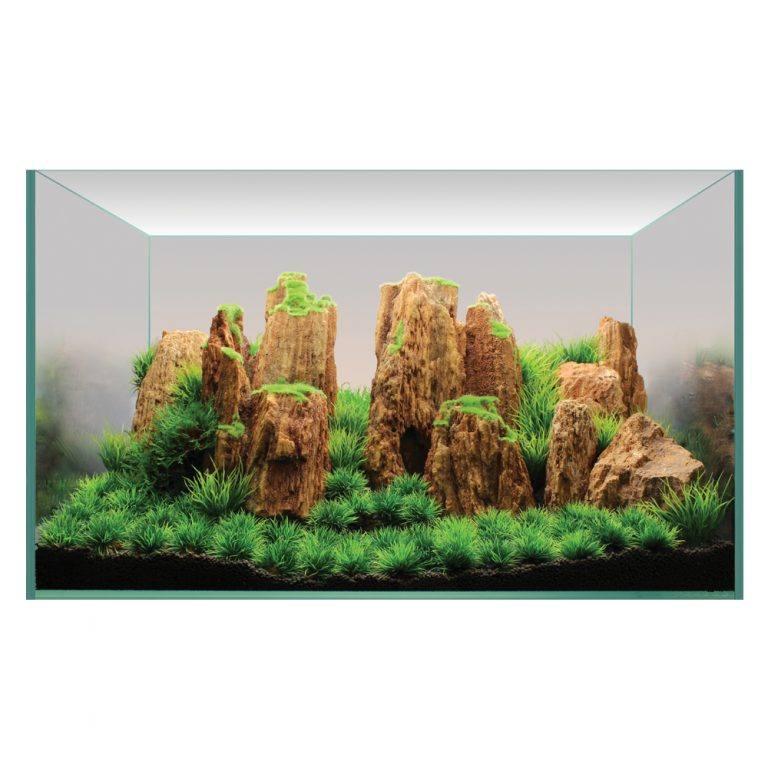 Hugo Kamishi Aquascaping Decor Display Kit 2