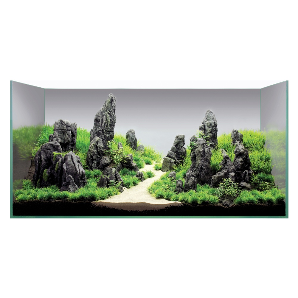 Hugo Kamishi Aquascaping Decor Display Kit