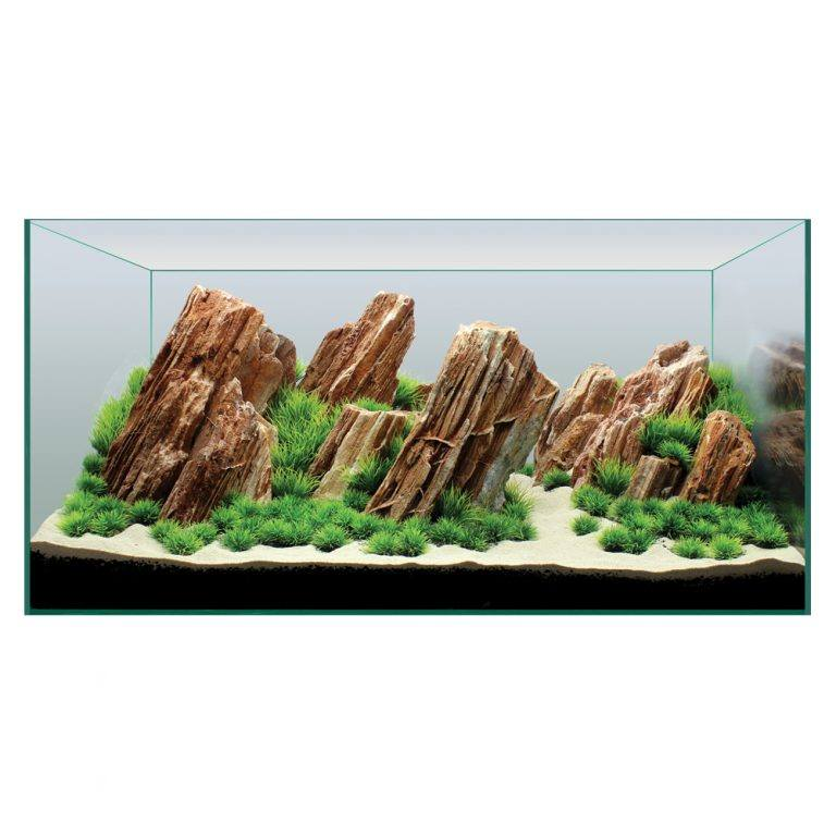 Hugo Kamishi Aquascaping Decor Display Kit 7