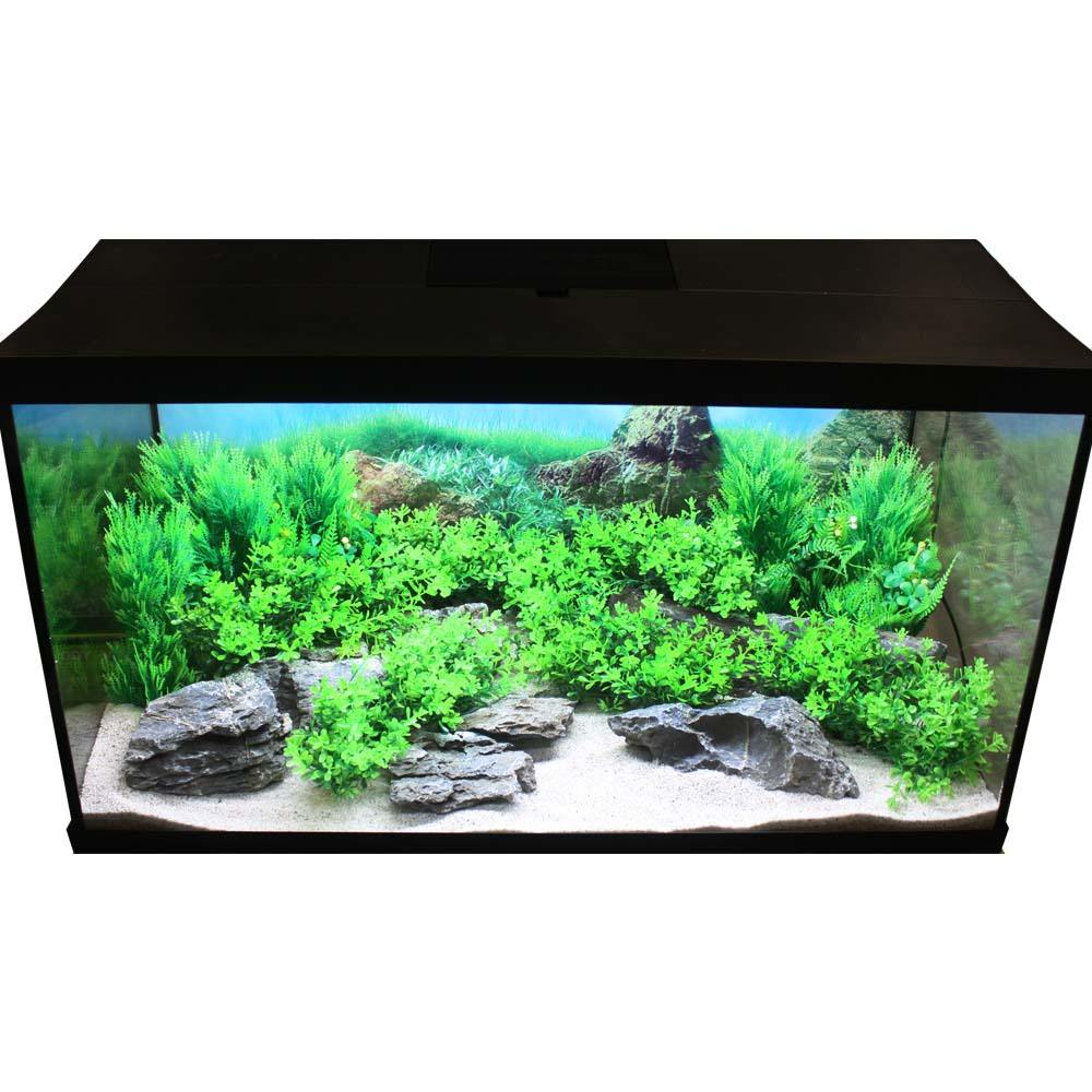 Hugo Kamishi Aquascaping complete Decor Display Kit 80cm