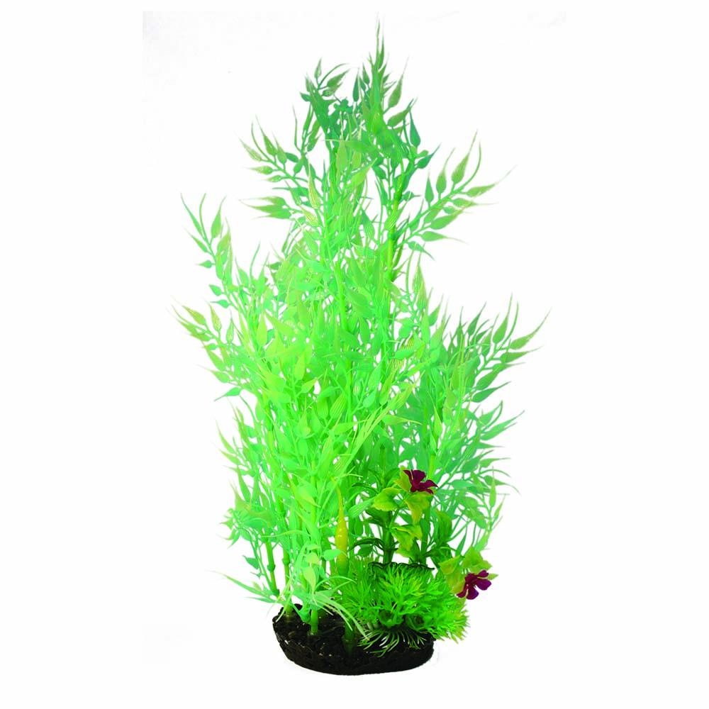 Hugo Kamishi Plant Cluster 35cm