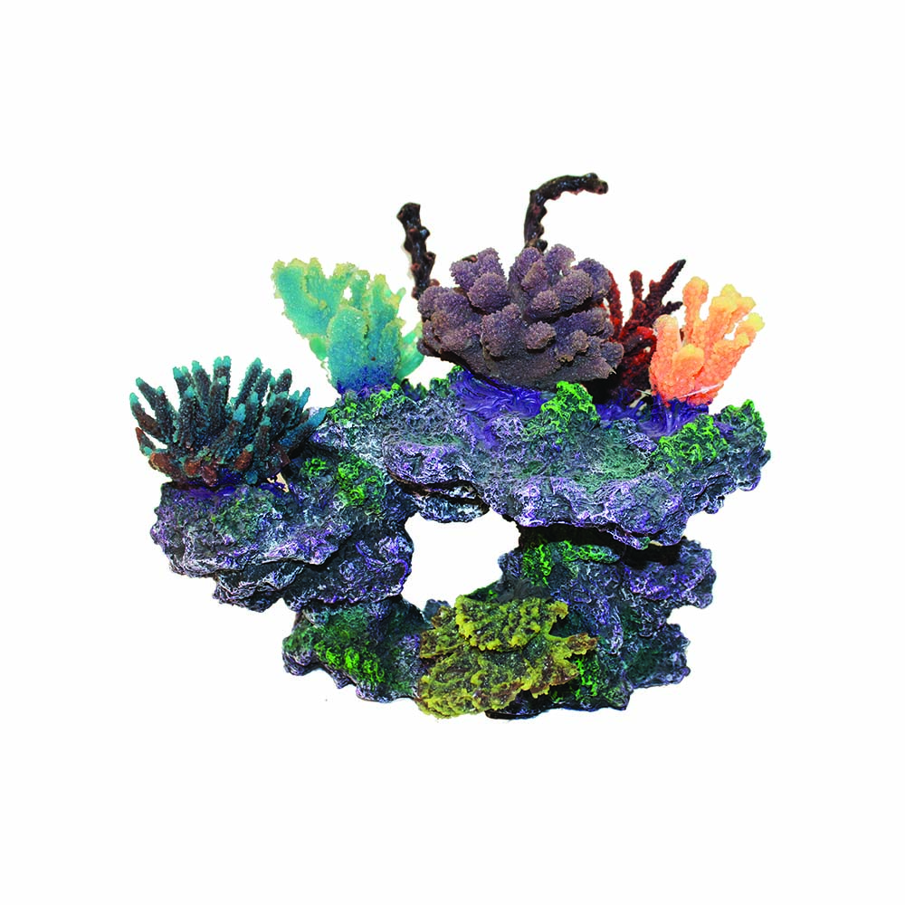Coral Sculpture 40x23x32