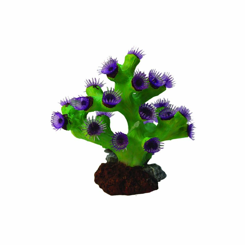 Turbistria Purple 13x8x12