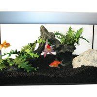 Simplicity Aquarium Collection