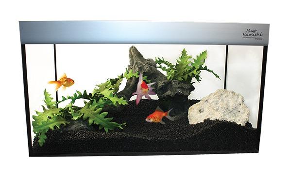 Hugo Kamishi Simplicity Aquariums