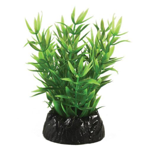 Hugo Kamishi Lindernia Plant 10cm