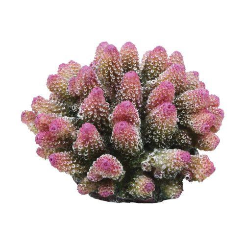 Stubby Acropora Coral 15x15x10cm