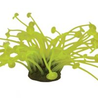 Neon Coral Yellow 7cm