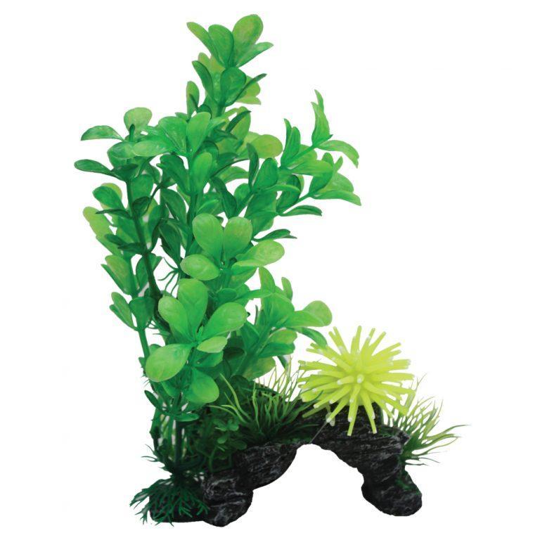 Hugo Kamishi Rock and Plant 20cm