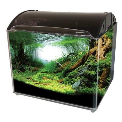 Acrylic Aquarium Collection