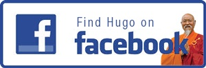 find Hugo Kamishi on Facebook