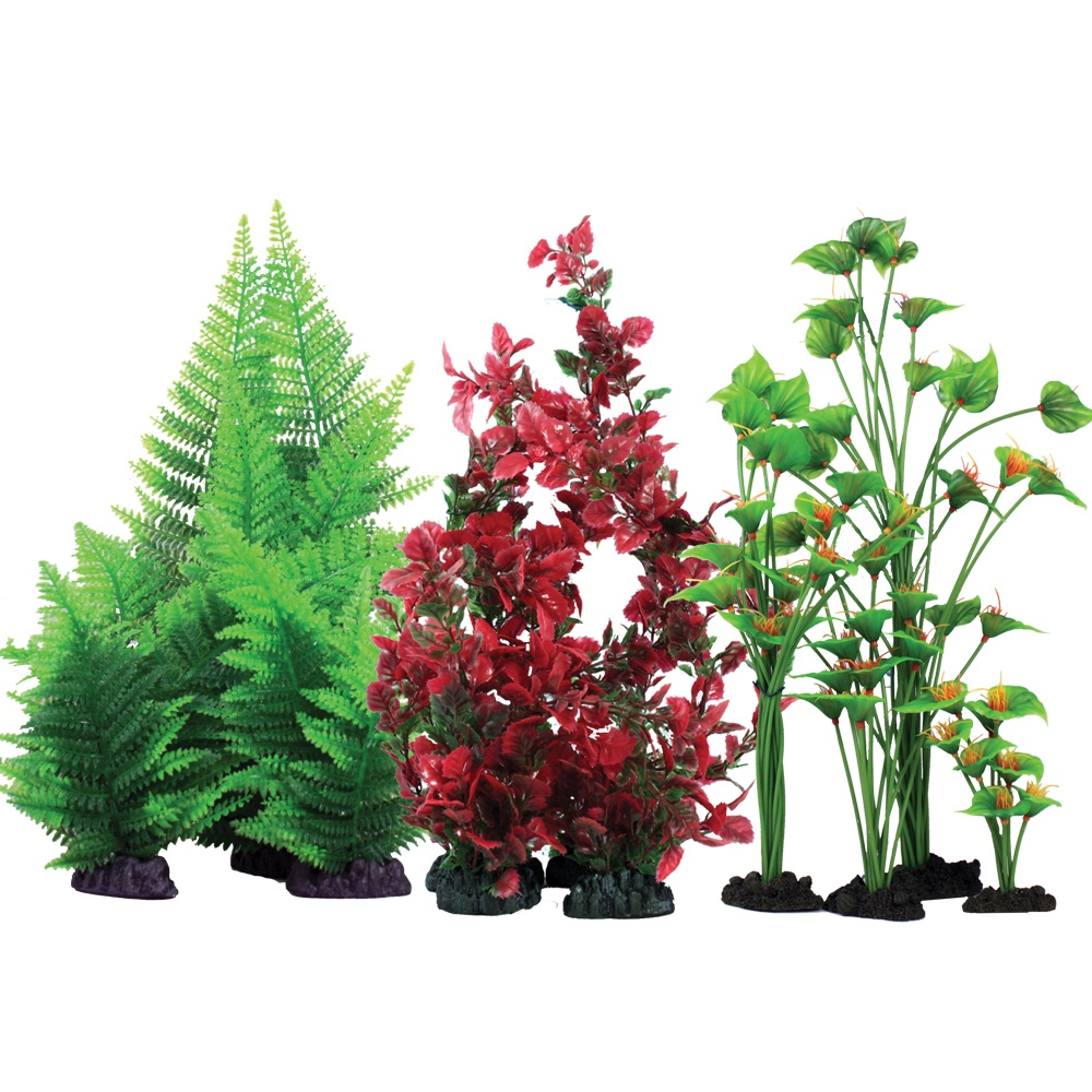 Plastic Plant Collection