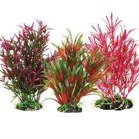 Premium Plant Collection